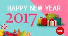 2017 정유년 새해복 많이받으세요!