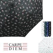 카르페디엠 에델바이스 2단수동양우산 (808)