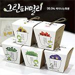 그린패밀리(99.9%싹이나는화분)