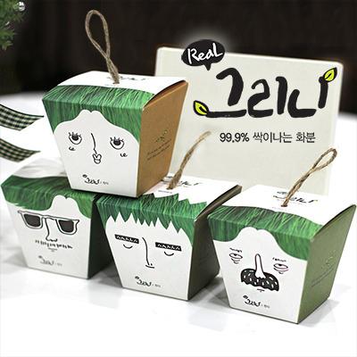 그리니(99.9%싹이나는화분)