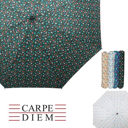 카르페디엠 그레인가든 2단수동양우산 (810)